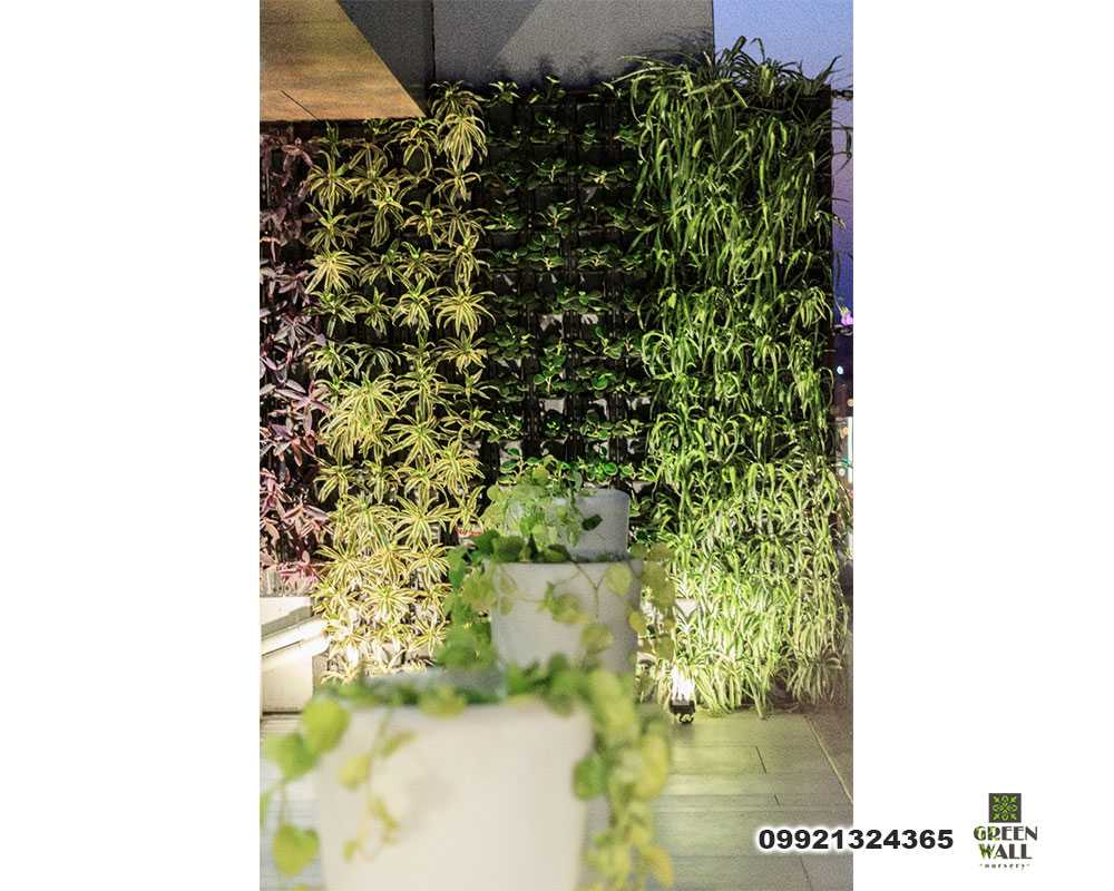 Outdoor Green Wall