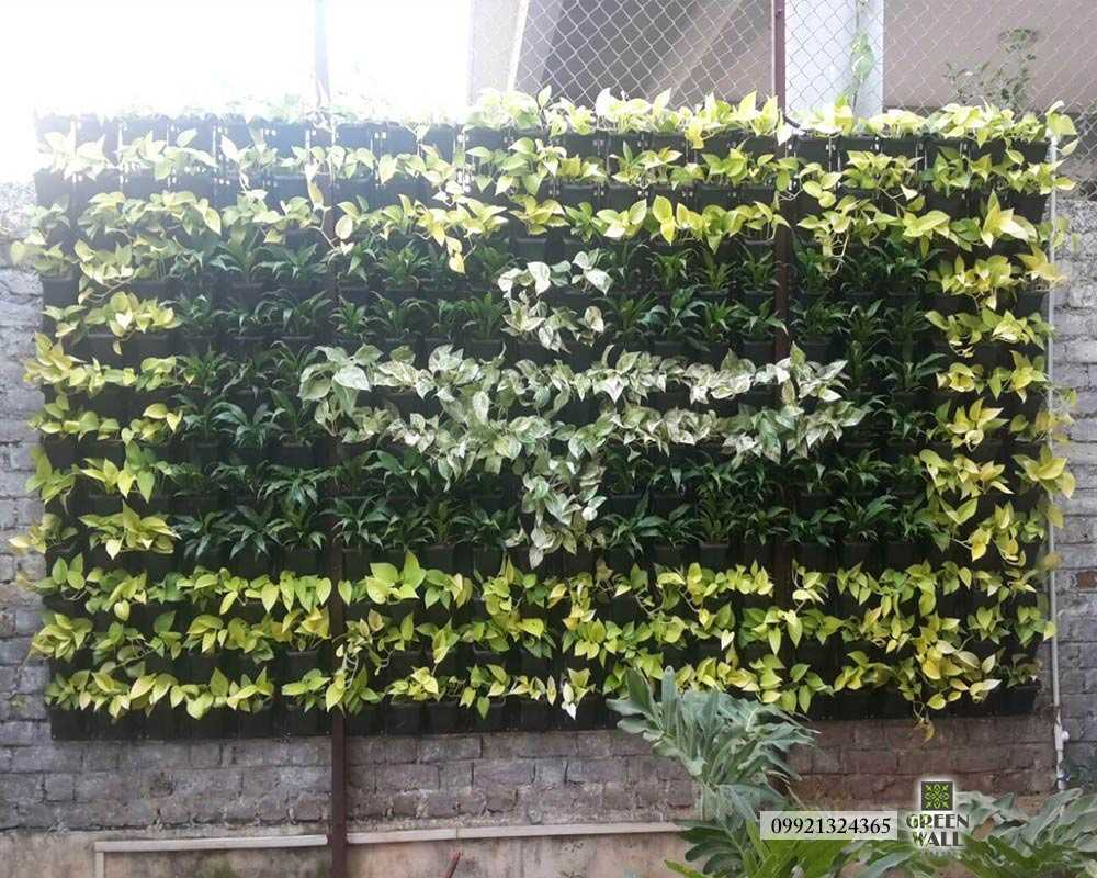 Green Wall Designer